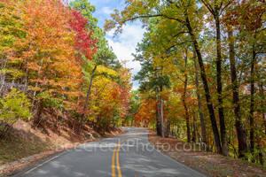 Fall Scenery, fall colors, fall scenery, autumn. season, fall scenery 2018, autumn season, fall, maples, red, orange, yellows, black hickory, pine, pop, autumn colors, arkansas, foliage, leaves, roadt