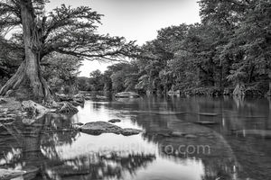 Guadalupe river, black and white, BW, Guadalupe State Park, cypress trees, rocks, flood, river rocks, water, river, texas hill country, texas, landscape, texas landscape,