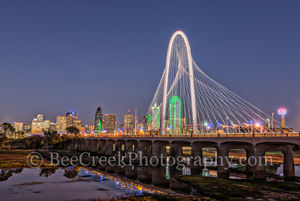 Dallas, Fountain Place, Heritage Plaza, Trinity river, and the Red White and blue Reunion Tower, bank of america, city, cityscape, cityscapes, downtown, skyline, skylines, urban, night, pano, verticle