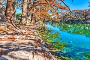 America, American, Frio River, Garner State Park, blue green waters, blue water, clear water, colorful, fall, fall cypress trees, images of Texas, landscape, landscapes, photos of Texas,