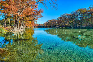 America, American, Frio River, Garner State Park, blue green waters, blue water, colorful, cypress trees, emerald, fall, fall colors, fall cypress trees, fall trees, images of Texas, landscape,