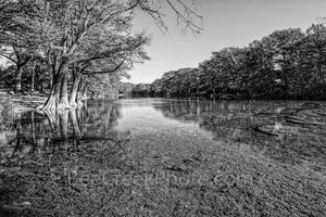Frio River, BW, Black and White, Garner State Park, scenic, Texas hill country, Texas, landscape, landscapes, Texas landscape, Texas landscapes, fall, rural landscape, rural landscapes,  waters, cypre