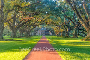 Lousiana, National Historic Landmark, Oak Alley Plantation, Sunrise, big house, canopy, landscape, landscapes, mansion, mississippi, oak trees, plantation, sidewalk, slaves, sugar cane
