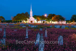 Texas church, country road, back road, wildflowers, indian paint brush, yellow daisy, cementary, head stones, religious, texas church night, church, spring, texas wildflowers, graves, country,