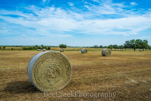 Haybales, Hill Country, blue sky, clouds, crop, farm, landscape, landscapes, ranch, rural landscape, texas