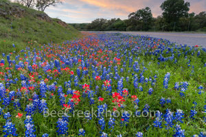 texas, wildflowers, wildflower, wildflowers, dusk, texas bluebonnets, texas wildflowers, texas indian paintbrush, bluebonnets, indian paintbrush, road, roadside wildflowers, texas hill country, hill c