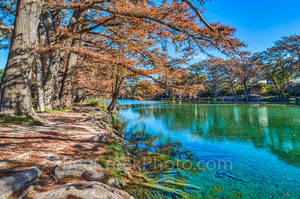 America, American, Frio River, Garner State Park, blue green waters, blue water, colorful, cypress trees, emerald, fall, fall colors, fall cypress trees, fall trees, images of Texas, landscape, landsc