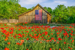 Vintage Barn Old Glory and Poppies