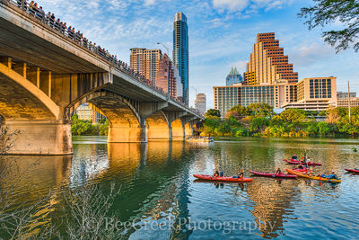 Austin Bat Watch
