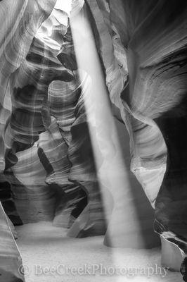 Canyon Light BW