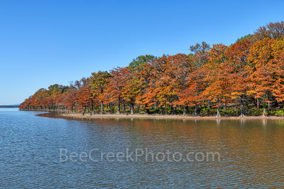 Colorful Cypress in Fall