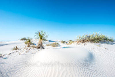 Desert Dunes2