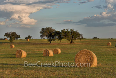 Haybales, hay, bales, Texas Hill Country, landscape, grasses, round bales, feed, horses, cows, goats, sheep, sunset, clouds, evening, farmer, field, llano, Texas, golden, cloud,