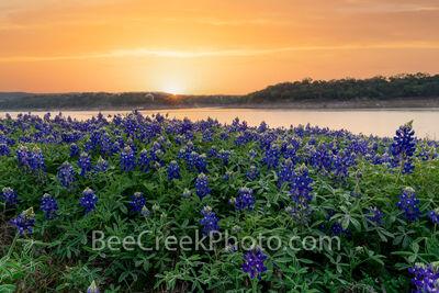 Sunrise Glow Over Lake Bluebonnets