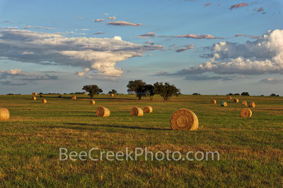 Haybales, hay, bales, Texas Hill Country, landscape, grasses, round bales, feed, horses, cows, goats, sheep, sunset, clouds, evening, farmer, field, llano, Texas,