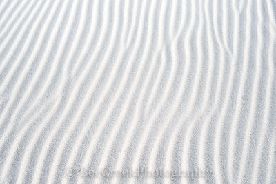 Patterns in the Sands