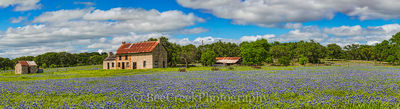 bluebonnets, bluebonnet, blue bonnets, landscape, landscapes, landscape, wildflowers, bluebonnet house, stone house, farmhouse, Texas Hill Country, flora, spring, spring flowers, scenic, images of tex