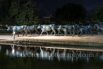 Dallas Pioneer Park Longhorns