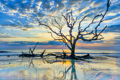 driftwood beach, morning, sunrise, reflections, sunrise, jekyll island, golden isles, barrier island, alantic coast, Georgia, east coast, landscape, beach,