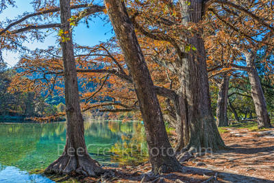 Garner State Park, Texas,, landscape, landscapes, Texas landscape, fall, frio river, rural landscape, blue water, clear water, blue green waters, fall cypress trees, colorful,