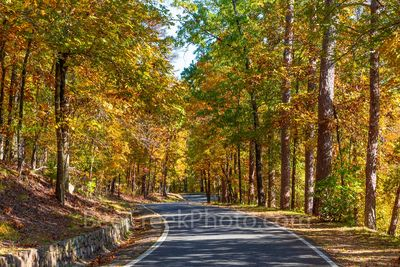 Fall on Tower Mountain Road