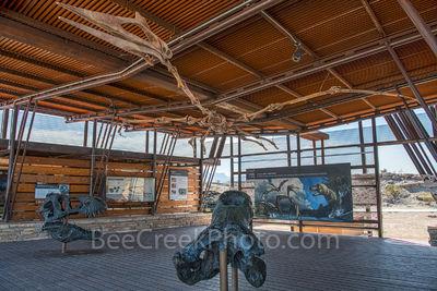 Fossil Discovery Exhibit, Big Bend Texas, Big Bend National Park,T-Rex, flying reptile, Quetzalcoatlus, giant crocodile, Deinosuchus, fossils,