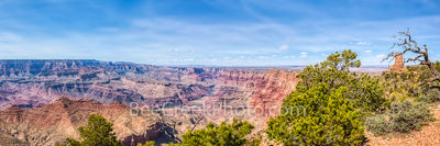Grand Canyon Watchtower View Pano