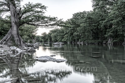 Guadalupe river, black and white, BW, monocromatic, Guadalupe State Park, cypress trees, rocks, flood, river rocks, water, river, texas hill country, texas,