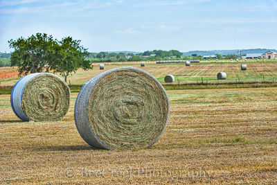 Haybales, blue sky, clouds, crop, farm, ranch, texas, texas hill country,