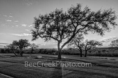 Hill Country Rest Stop Sunset BW