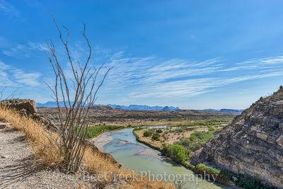 Ocotillo, Ocotillo cactus, Rio Grande River, Santa Elena Canyon, canyons, cliffs, desert, landscape, mountain, southwest, us