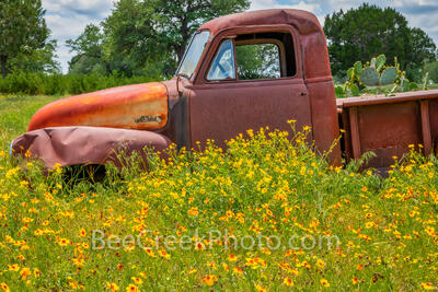 Old Truck and Wildflowers