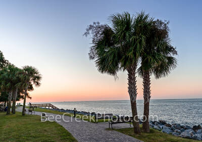 Palms at St. Simon Island Sunrise