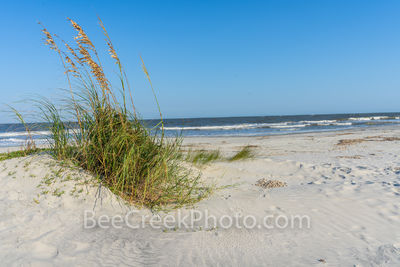 Jekyll island, sea oats, dunes, Alantic Ocean, Georgia, Golden isles, barrier island, beach, blue water,