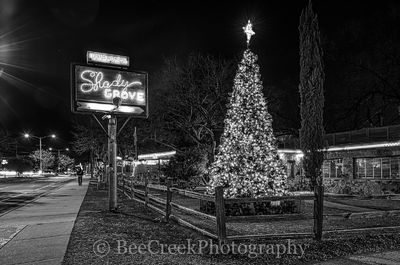 Austin, Shady Grove, restaurant, cafe, hamburgers, cityscape, cityscapes, black and white, BW, Christmas Tree, urban, downtown, live music,