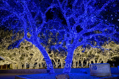 texas hill country, texas hill country christmas, pedernales electric cooperative, johnson city, christmas lights, johnson city, blue lights, white lights, christmas decorations, trees, hill country,