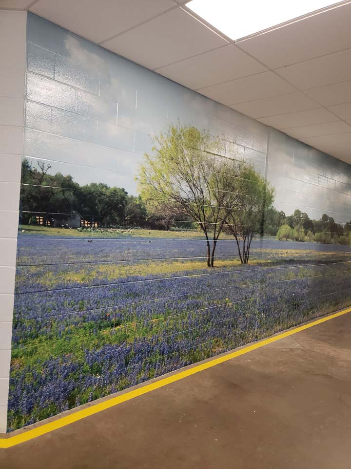 Bluebonnet field wall mural 72'x10' installed at our client in Dallas.