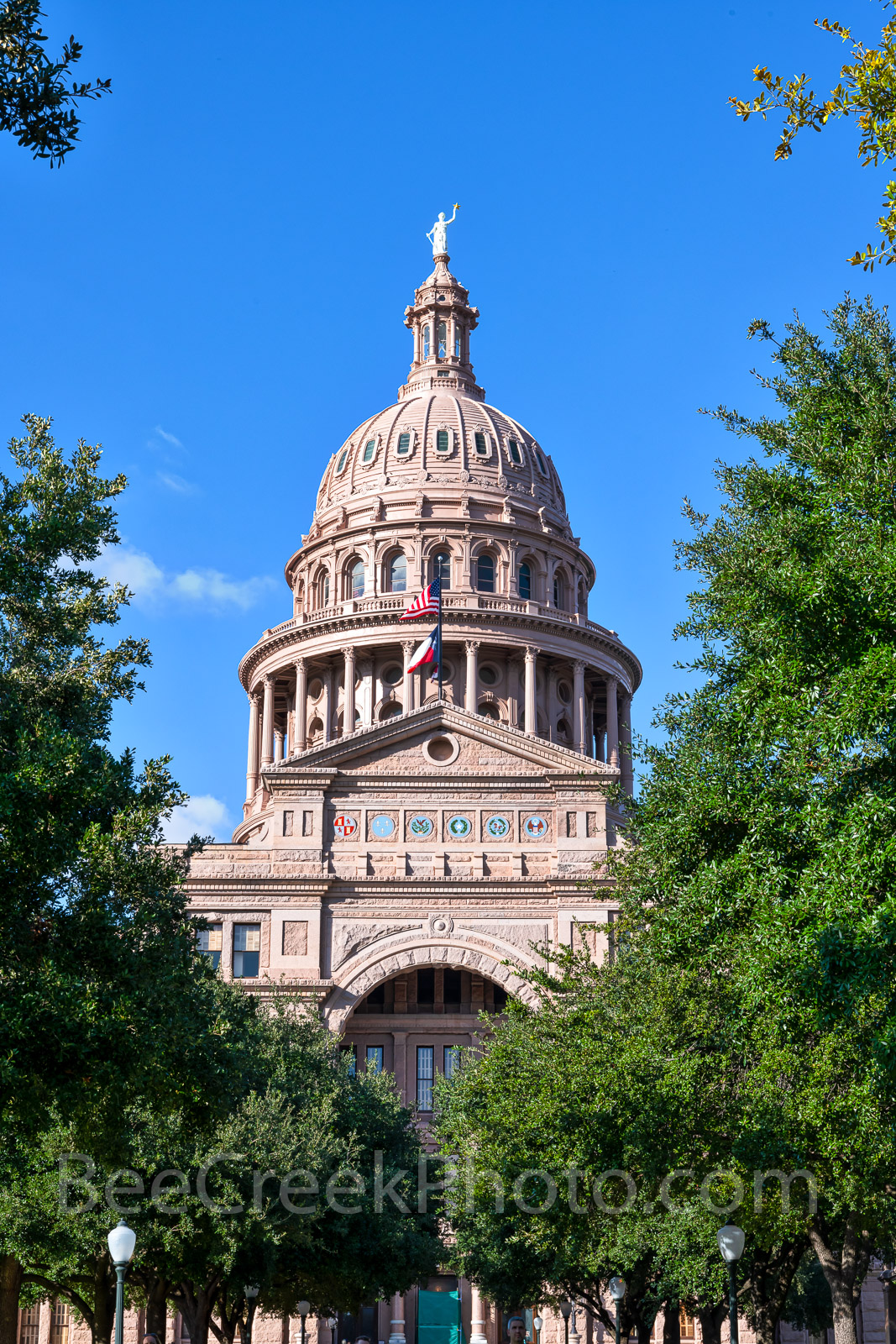 Capitol, Capital, Texas, vertical, building, Austin, south view, Congress ave., Capitol of Texas, Dome, red granite, renaissance rivival architecture, state capital, state capitol, images of texas,