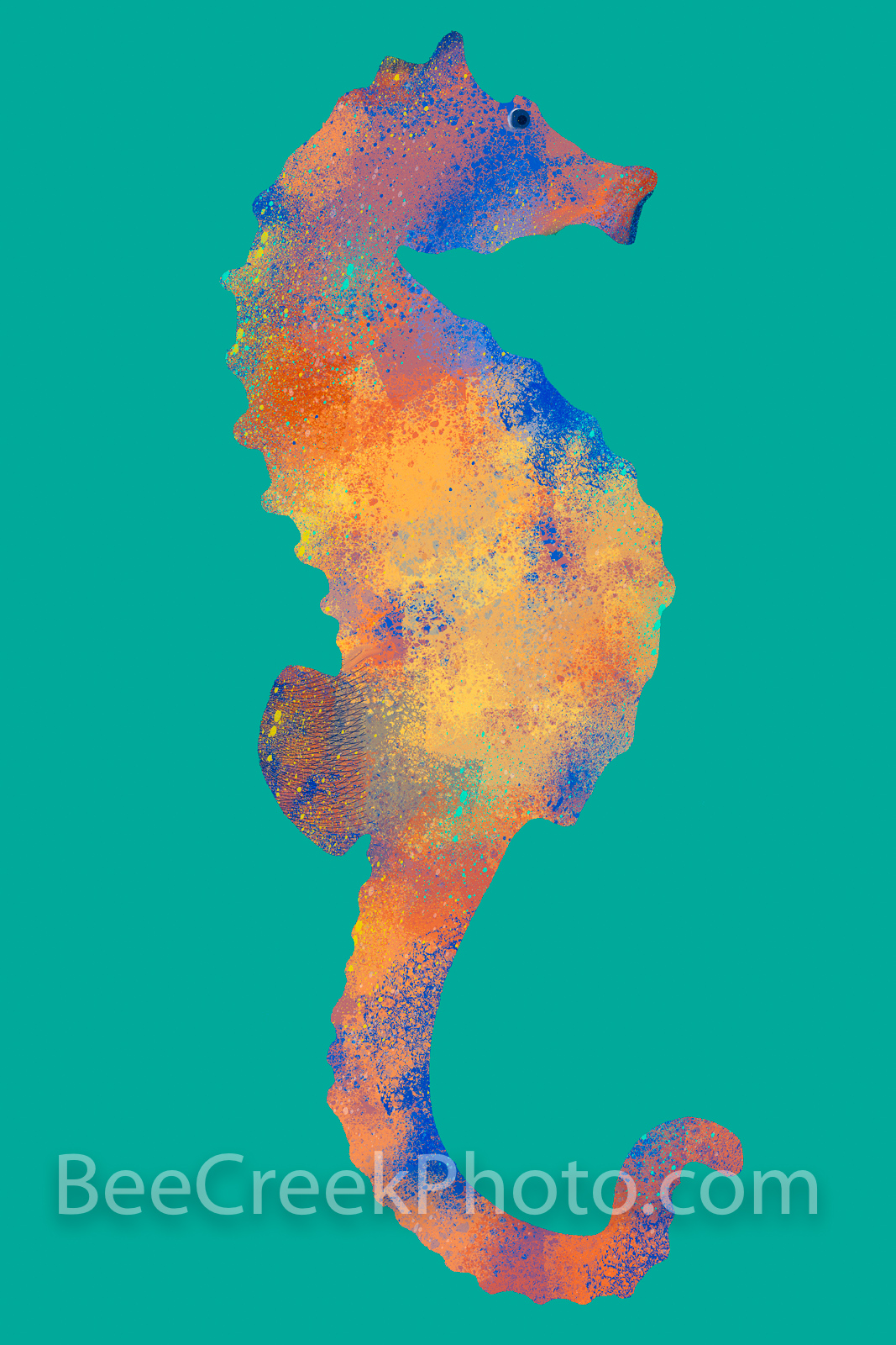 Colorized Seahorse Abstract with a blue green background. Digital artwork