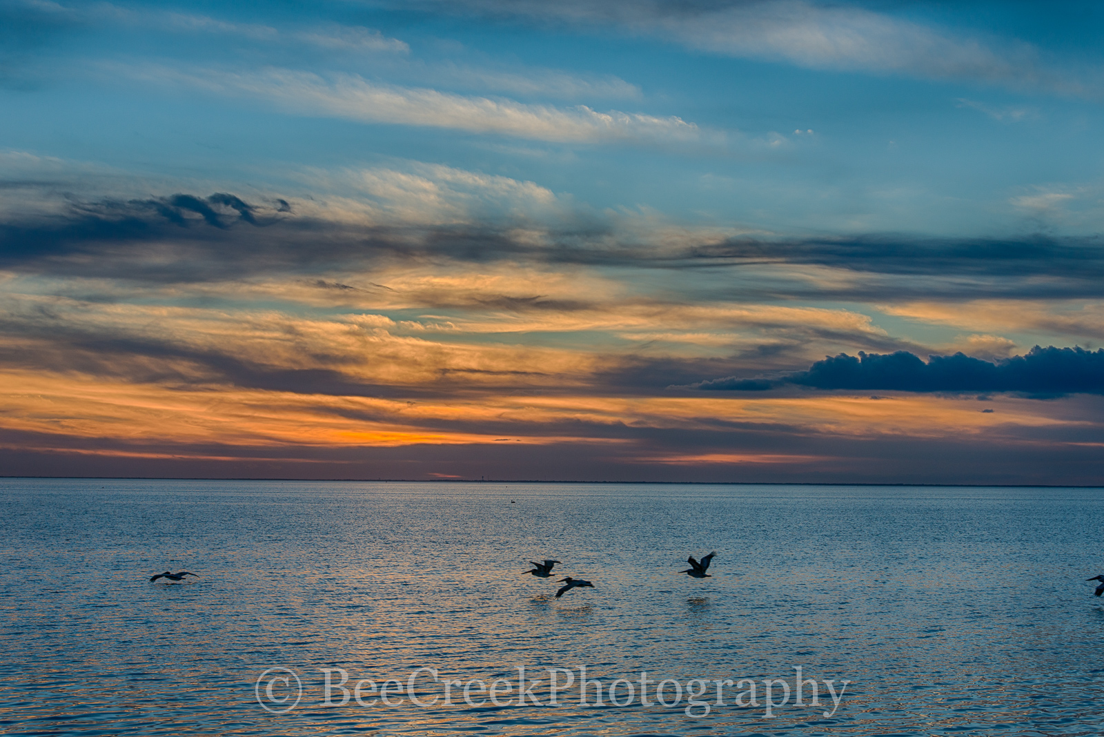 Padre Island, South Padre Island, South Padres, bay, birds, island, pelicans, south padre, sunset, landscape, colorful, coastal, beach, ocean, seascape, , photo