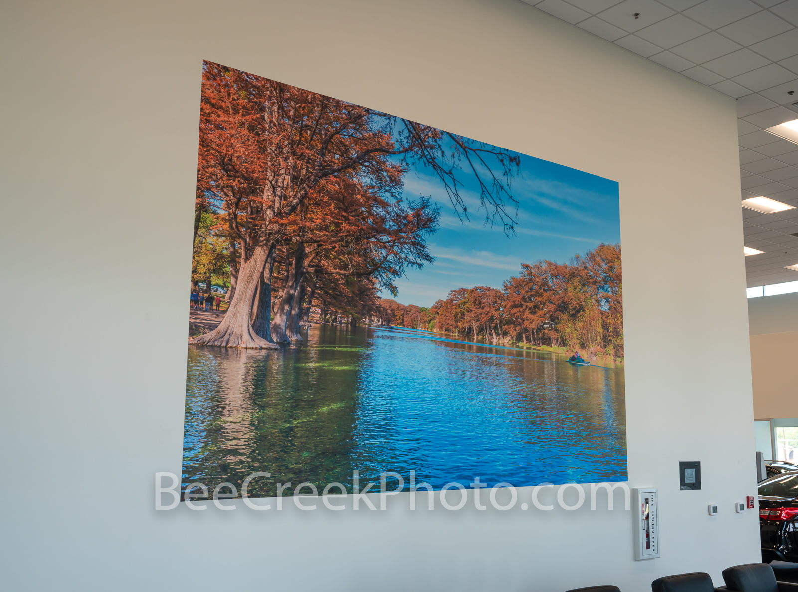 Wall mural, Texas hill country, large print, photo