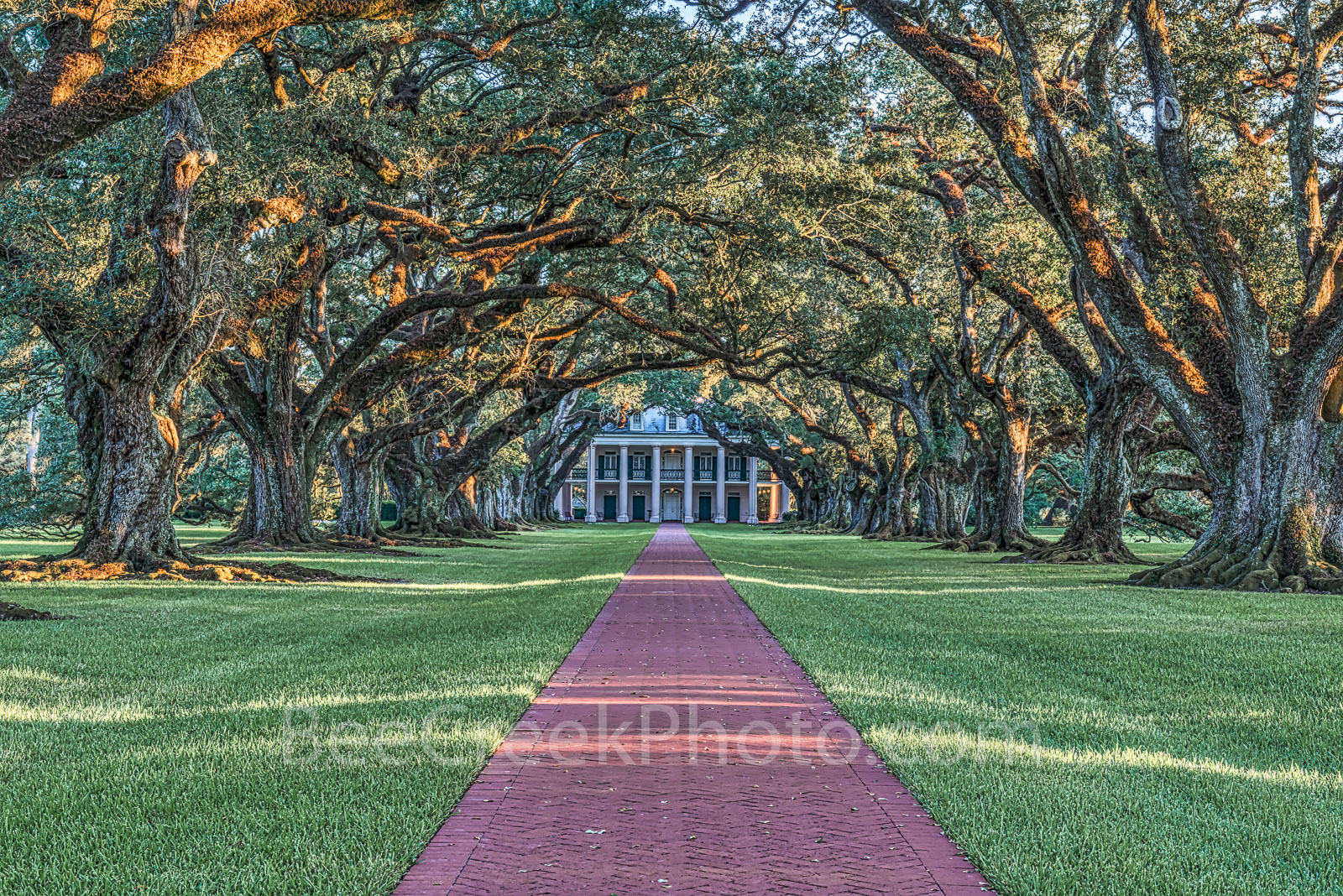 Oak Alley plantation, landmark, 300 year old trees, Vacherie, Louisiana, Mississippi river, National Historic landmark, Vacherie, slaves, sugar cane, , photo