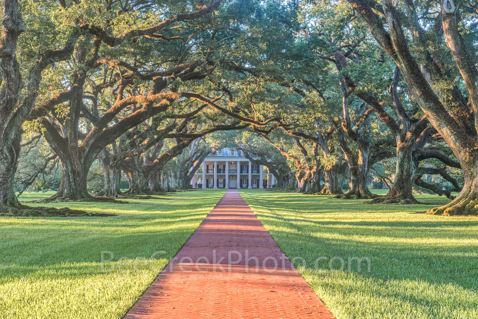 Lousiana, National Historic Landmark, Oak Alley, Sunrise, big house, canopy, landscape, landscapes, mansion, mississippi, oak trees, plantation, sidewalk, slaves, sugar cane, photo