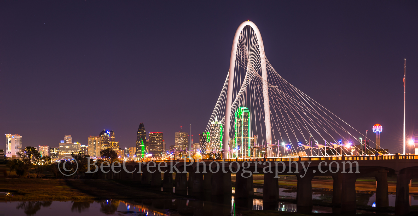 Dallas, Fountain Place, Heritage Plaza, bank of america, cityscape, cityscapes, pano, panorama, pedestrian bridge, reunion tower, skyline, skylines, photo