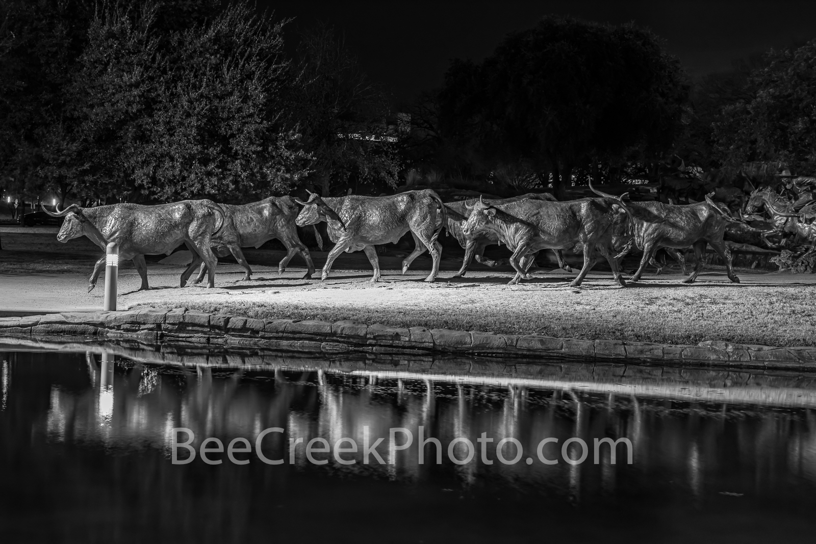 Dallas Pioneer Plaza Longhorn B W - These bronze statues of longhorns and trail riders as they reflected back in this water feature...