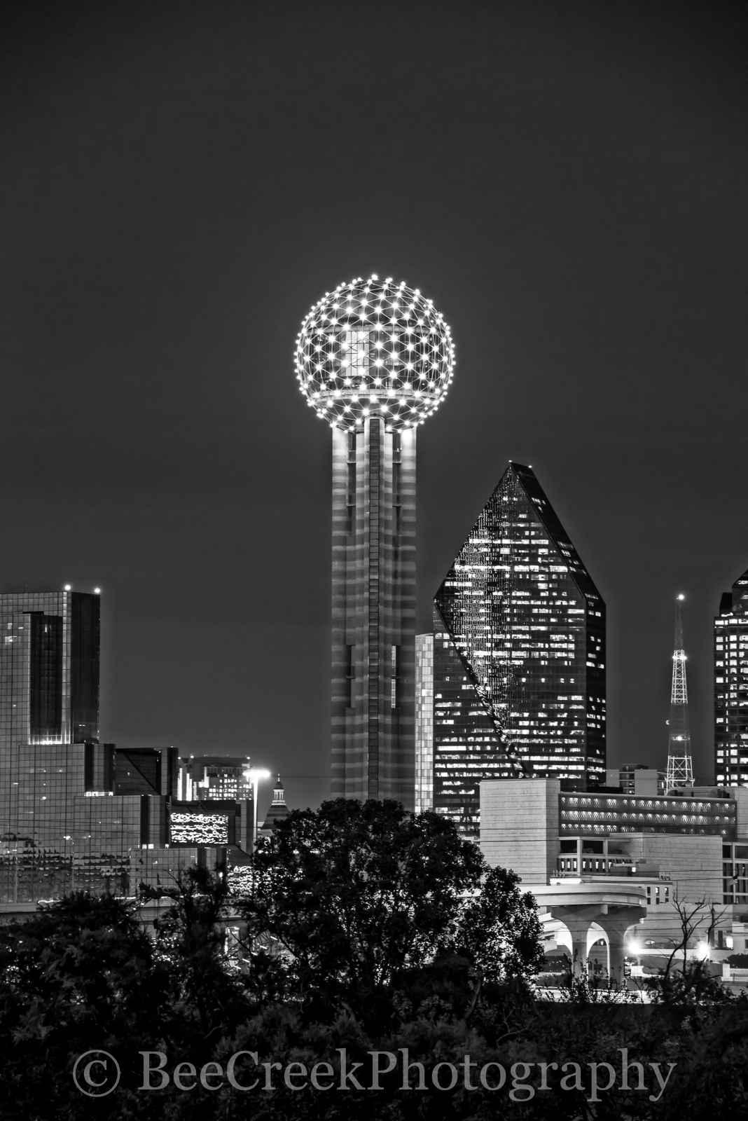 Dallas, Fountain Place, Hyatt Regency, black and white, bw, cityscape, cityscapes, reunion tower, photo