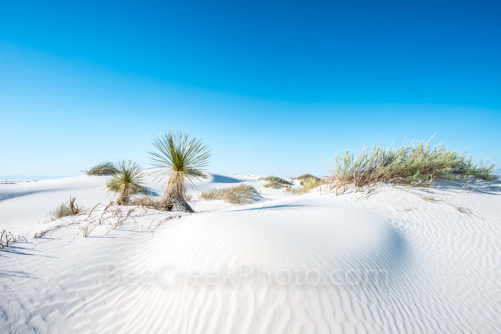 Desert dunes, landscape, new mexico, white sand National Monument, southern, NM, sandy, dunes, scenery, desert scenery,  southwestern US, , photo