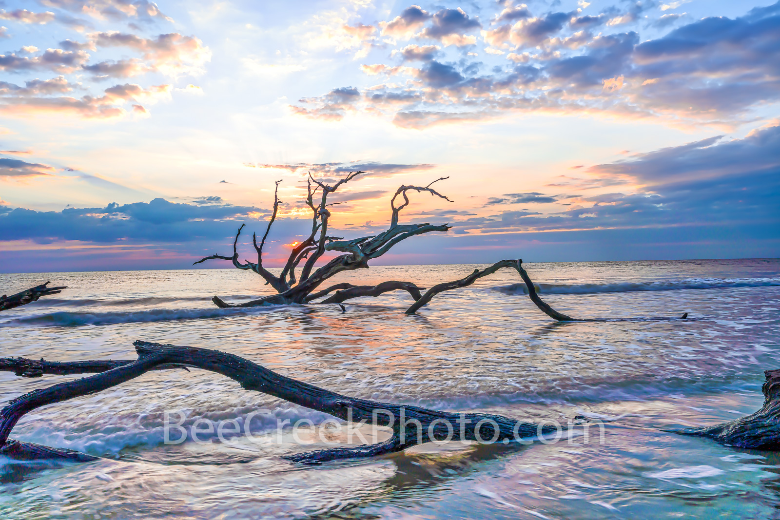 driftwood beach, driftwood, jekyll island, sunrise, trees, tide, deadwood, surf, rays, Alantic ocean, georgia, golden isles, east coast, coastal, ocean, , photo