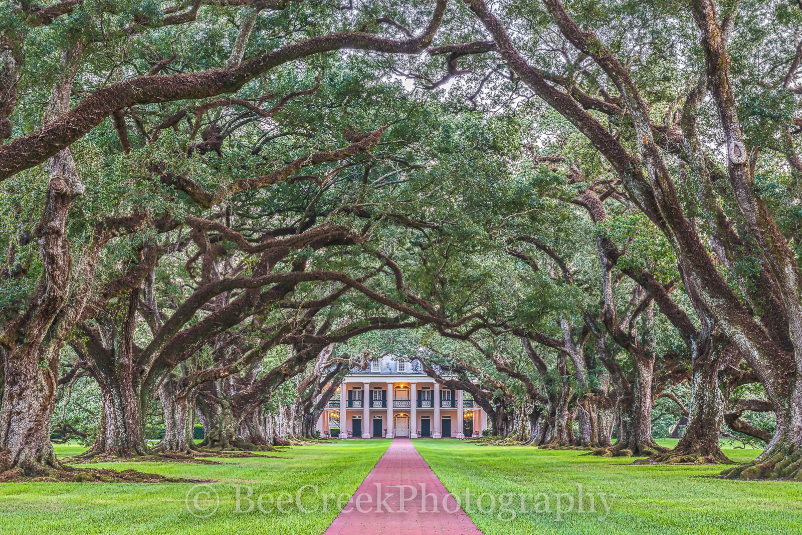 Lousiana, National Historic Landmark, Oak Alley, big house, branches, dusk, landscape, landscapes, mansion, mississippi, oak trees, plantation, sidewalk, slaves, sugar cane, photo