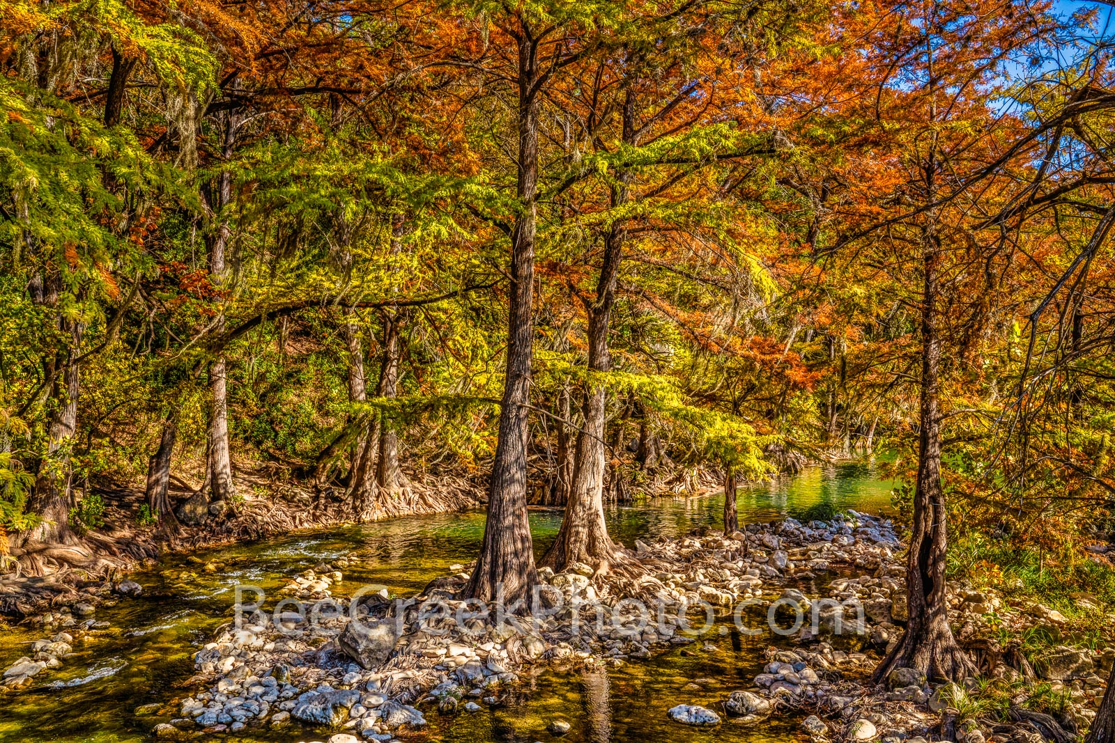 Fall Scenery along the Guadalupe River - There are many places along the guadalupe river in the Texas hill country to find fall...